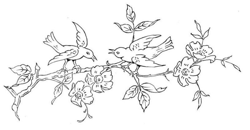 Popolare fiori-con-uccellini-sul-  XY37
