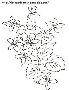 disegni di ricamo ciclamini